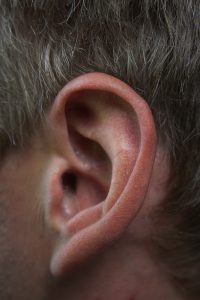 nature-body-ear